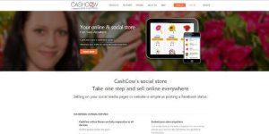 אתר השיווקי של חברת cashcow